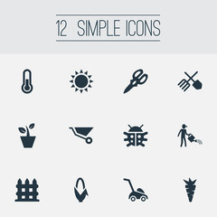 Vector Illustration Set Of Simple Horticulture Icons. Elements Beetle, Sunshine, Flowerpot And Other Synonyms Vegetable, Corn And Carrot.
