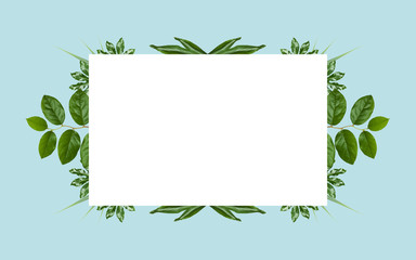 white blank space and green leaves on blue