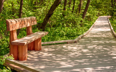 Wooden bench on wooden walkway. Play of light on ground and furniture. Stenshuvud national park in Sweden.
