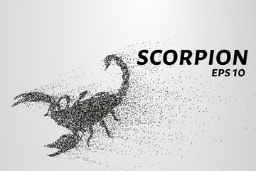 Scorpio of the particles. Scorpio consists of circles and points. Vector illustration.