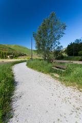 Countryside - Orpiano - Macerata - Marche - Italy