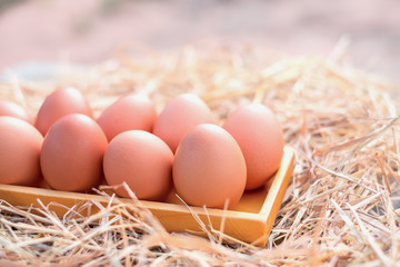 Good quality chicken eggs in a square wooden box on straw, Local farm in Thailand. Close-up and blur background.