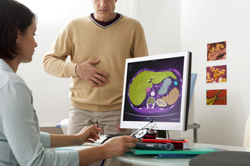 Models On screen, abdominal scanner (healthy) We can see the liver (in green), the stomach, the spleen and the kidney