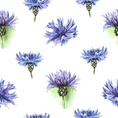 Seamless floral pattern with beautiful cornflowers