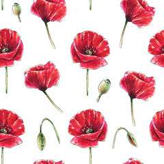 Seamless floral pattern with beautiful red poppy flowers