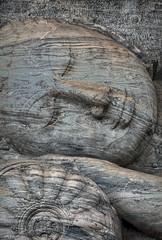Polonnaruwa Gal Vihara Buddhist Statue close up
