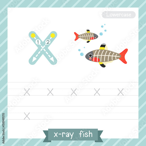 Letter X Lowercase Tracing Practice Worksheet With X Ray Fish For