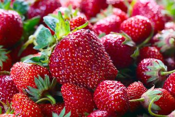 Juicy ripe sweet strawberries as a summer crop