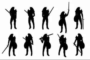 silhouette  warrior