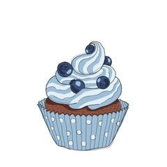Hand drawn chocolate cupcake with blueberries, vintage colorful food sketches, isolated on white background. Vector illustration.