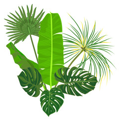 Hand drawn tropical palm leaves composition with jungle exotic flower on white background Botanical vector illustration
