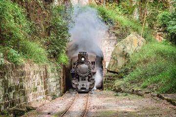 Steam narrow-gauge train.