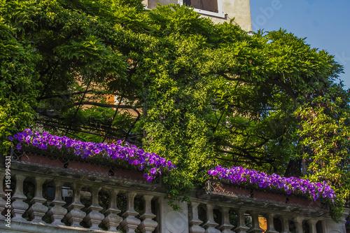 Casa della mamma un terrazzo di ringhiera