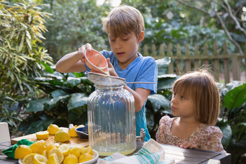 Boy and young sister pouring lemon juice for lemonade at garden table