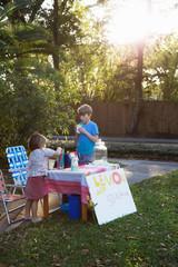 Boy and sister drinking lemonade from lemonade stand in garden