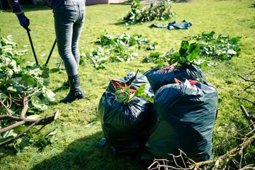 Frau bei Gartenarbeit - Heckenschnitt im Plastiksack