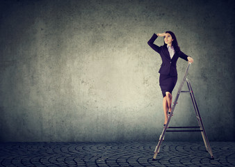 business woman on a ladder looking far away