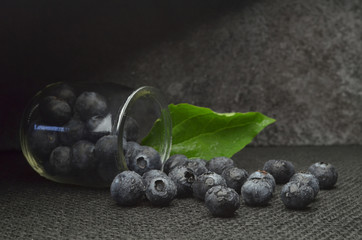 blueberries fresh fruits