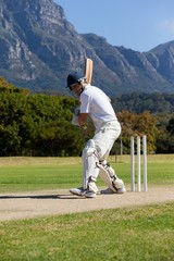 Side view of cricket player playing on field