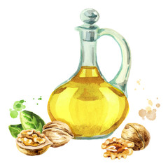 Walnut natural oil. Hand-drawn watercolor illustration