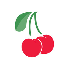 Cherry with branch and leaf. Vector illustration. EPS10