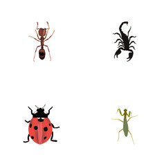 Realistic Poisonous, Emmet, Ladybird And Other Vector Elements. Set Of Insect Realistic Symbols Also Includes Poisonous, Locust, Insect Objects.