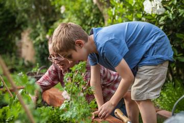 Woman and boy gardening in vegetable garden