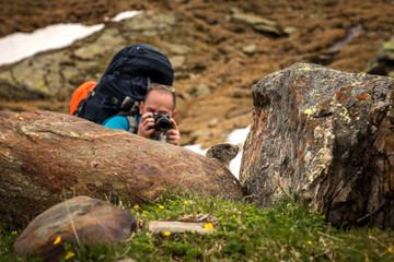 Young photographer photoghraphing a cute alpine marmot in national park.