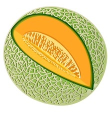 Perfectly ripe melon with a slice cut out of it.