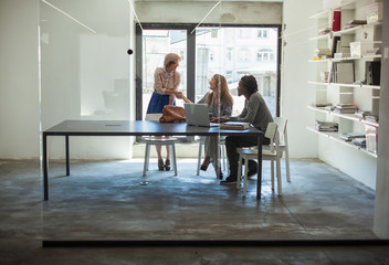 Young Business People Cooperating at a Modern Office