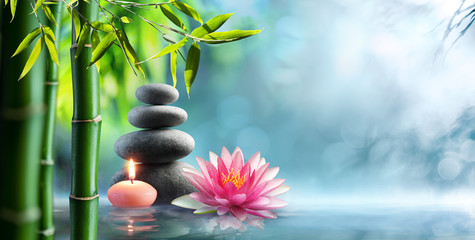 Photo sur Plexiglas Nénuphars Spa - Natural Alternative Therapy With Massage Stones And Waterlily In Water