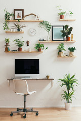 Computer in a cool business workspace full of plants