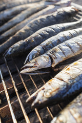 Grilled Fish  Seafood Close up
