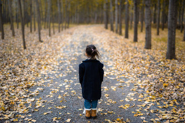 Cute little girl in the autumn forest