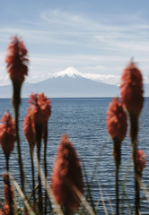 View of Osorno Volcano from Frutillar, Chile 2652m