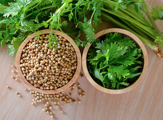 Coriander and seeds