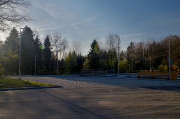Empty parking lot in forest