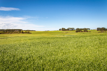 Idyllic landscape in Asturias in Spain