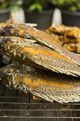 Fisch Streetfood