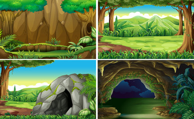 Four different scenes of forests