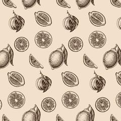 Vector sketch background fruit. Citrus