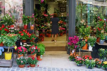F, Burgund, Arnay-le-Duc, wunderschöner Eingang zu einem Blumenladen in der Altstadt