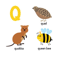 ABC letter Q funny kid icons set: quokka, quail, queen bee