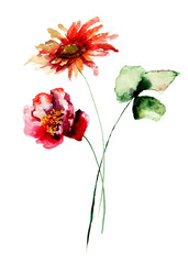 Template for card with Poppy and Gerbera flowers