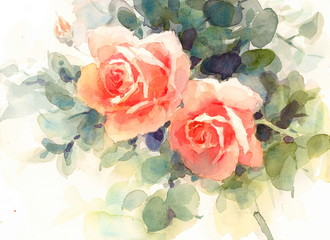 Watercolor Flowers Roses Floral Background Texture Hand Painted Illustration
