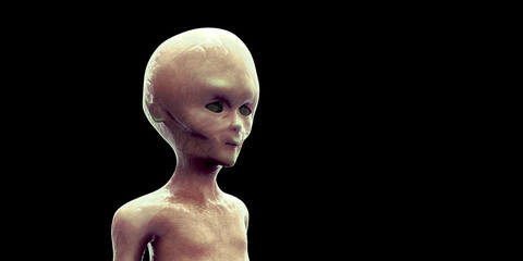 Extremely detailed and realistic high resolution 3d image of an extra terrestrial alien on black background.