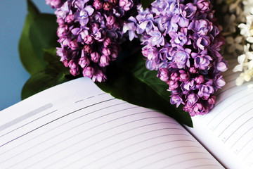 Lilac, flowers lilac and book