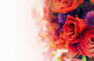 Beautiful flower background / wallpaper made with color filters effect.