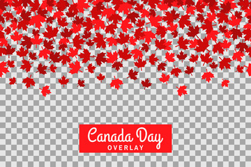 Seamless pattern with maple leafs for 1st of July celebration on transparent background. Canada Day.