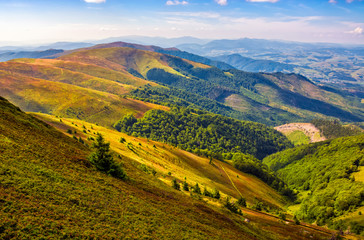 Carpathian Mountain Range in summer